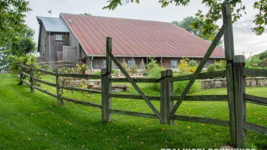 woodland farm, landscape