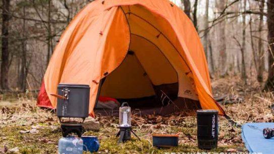 campsite, bugs