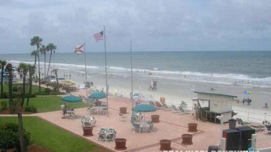 florida beach, bacteria
