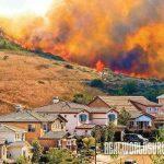 vegetation, prevent wildfire