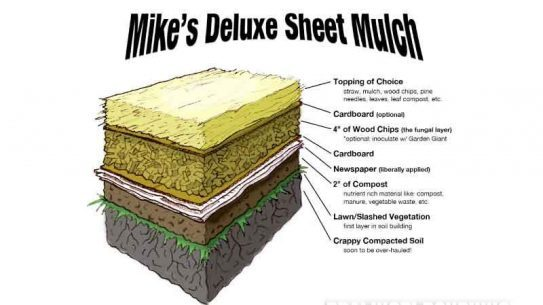 Mike's Deluxe Sheet Mulch