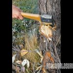 The first step to felling a tree to to use your ax to cut perpendicular to the grain.