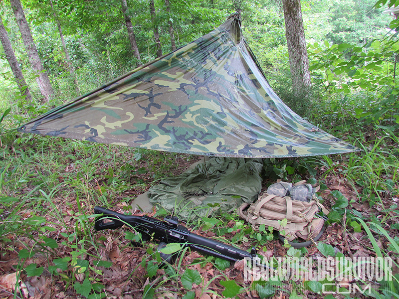 12 Bad Prepper Strategies woods