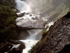 water, waters, water source, water sources, water wild, wild water source, water survival, water survive, water valley