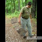 After trapping a raccoon, the author heads to the pond for dispatching.