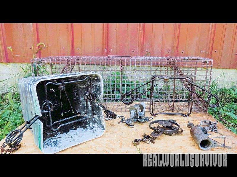 Different types of raccoon traps.