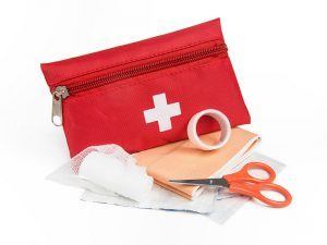 Invest in emergency medical first-aid kits for wilderness survival.