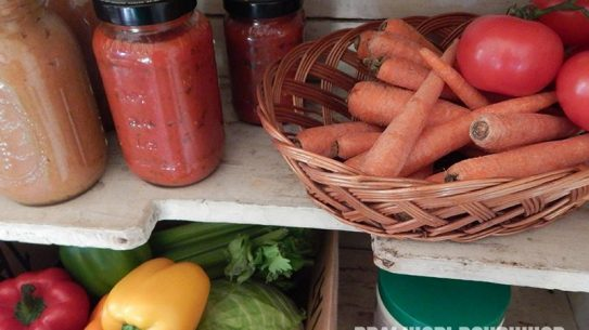 To ditch your fridge keep canned goods and fresh produce on your kitchen shelf.