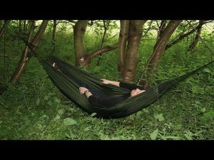 Sleep on elevated surfaces in survival situations.