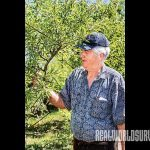 Jim Gilbert shares his fruit growing knowledge.