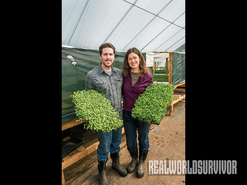 Kyle and Christi hold sunflower and pea microgreens.