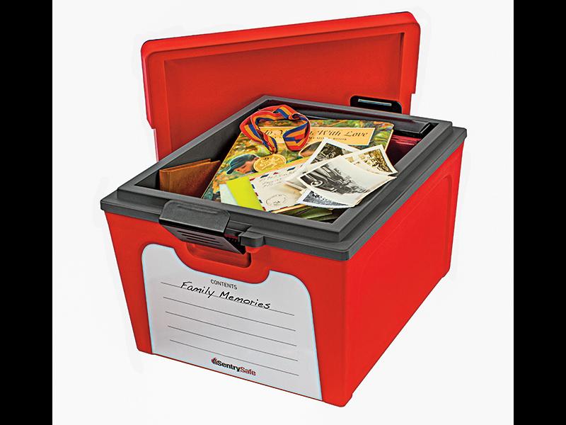 Sentry Storage Safe