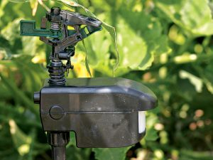 Motion-activated sprinklers can deter animals from staying in your garden.