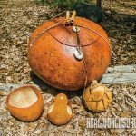 Nigerian bushel gourds