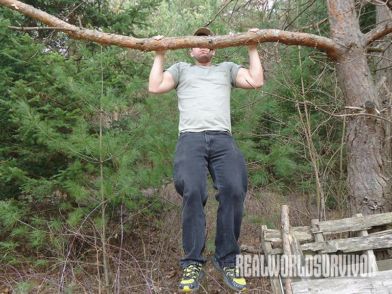 Do pullups to prep for survival.