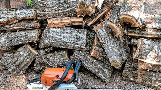 You can chop a whole stack of wood in just 10 minutes of using Northern Tool's Powerhorse.