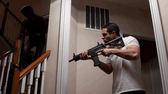 rifles, survival, guns
