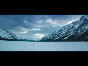 The Revenant, winter set, cold, movie