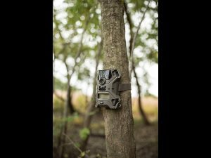 Wildgame Innovations scouting camera