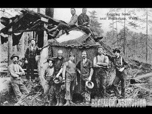 woodcutter, axes, wood splitting, diy, backwoods tips