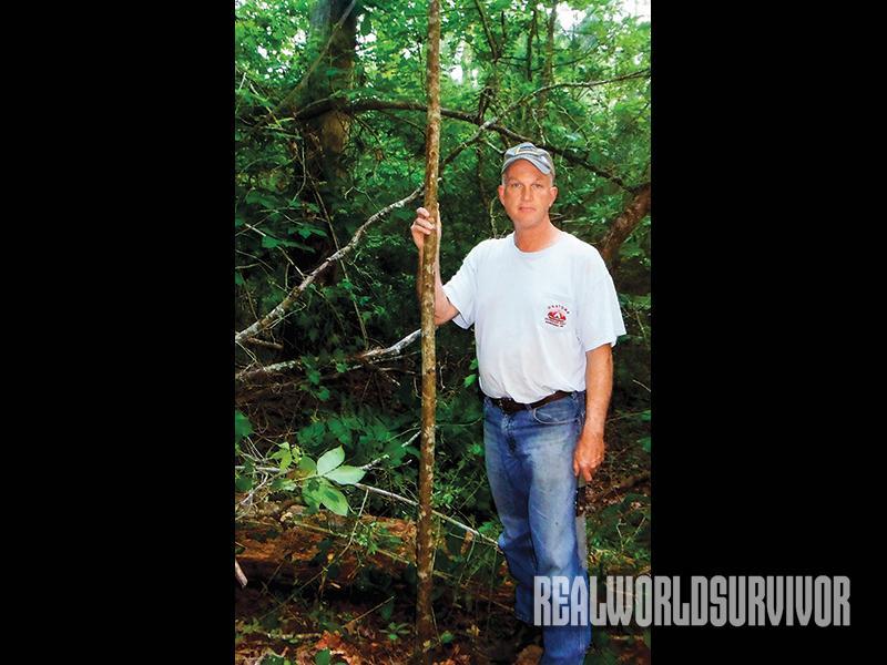 Drew Turner, bow wood, diy longbow