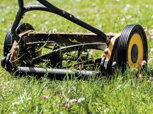 The push mower offers a great opportunity for exercise.