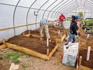 sustainable greenhouse, hoophouse
