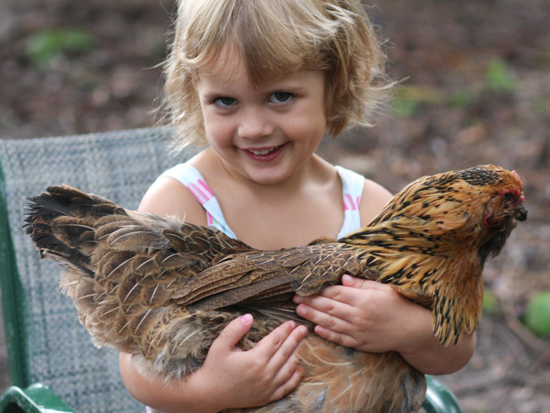 preschool, urban farming, gardening