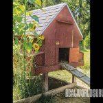 DIY Chicken Coop, door