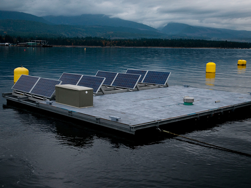 Floating Solar Farm, water