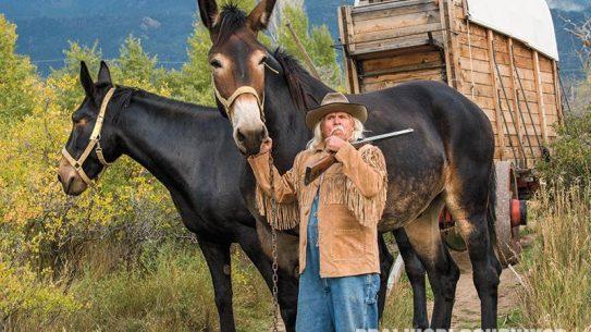 Mule Skinner, mule team, John Stewart