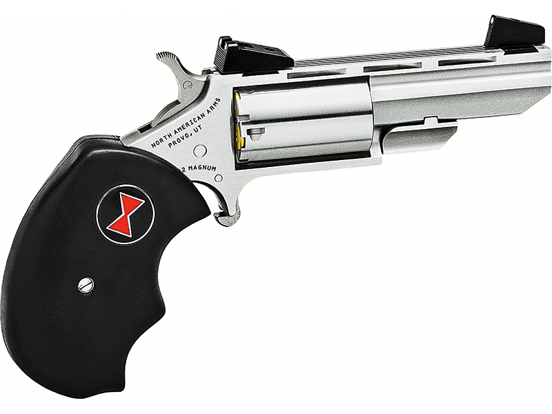 Backcountry Pocket Pistols NAA Black Widow pistol
