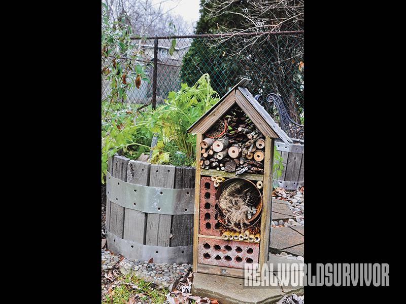 DIY, garden, yard, nesting, insects, bugs, bug house, bug out, garden