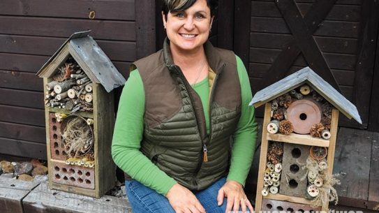 Michelle Cerino, DIY, garden, yard, nesting, insects, bugs, bug house, bug out
