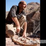 les stroud survivorman show