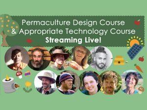 paul wheaton permaculture course kickstarter