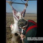 deer meat cutting