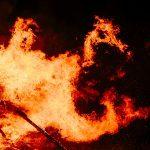 wildfire closeup