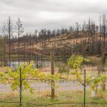 Butte Fire Butte Creek Fire
