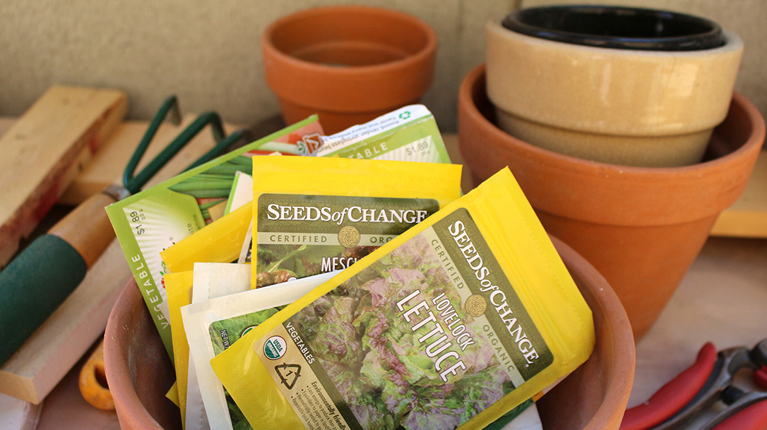 saving seeds, long-term storage