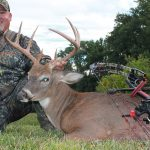 iSurvived Special: 9/11 and Will Jimeno, White-tail buck