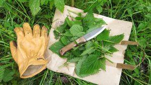 Edible Plants, knife, nettle, glove