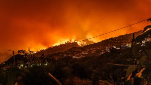 Surviving wildfire hot months they can strike anywhere