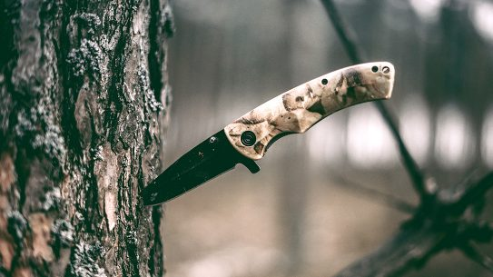 knife in a tree