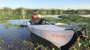 Oru kayak, lake, reeds, water