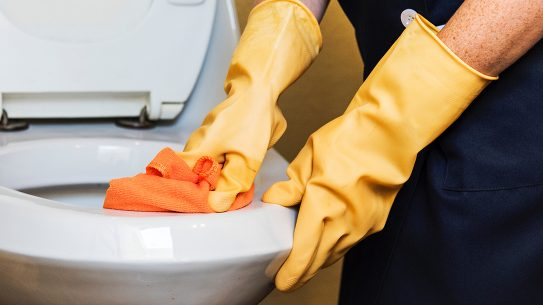 germs, toilet, cleaning, gloves and sponge