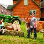 Energy Efficient Home, cow, tractor, dog, farmhouse