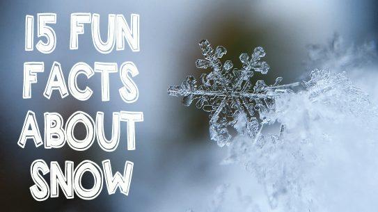 Snowflake on ice