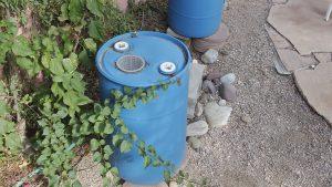 rain barrels, water, garden