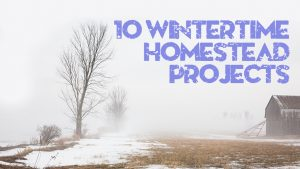Home Garden Hacks, winter, farm